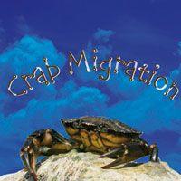 Banda de Música da Força Aérea Portuguesa - Crab Migration